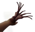hånd_modifisert2